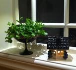 Litet hus-Blå blommor