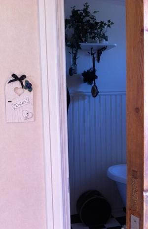 Toalettskylt-Blå blommor